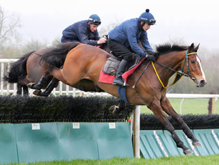 Kauto pictured during this morning's session