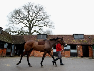 Kauto Star is regaining fitness at Ditcheat