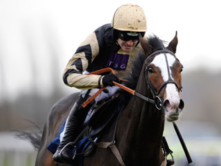 Paul's Cheltenham Festival kicks off with Prospect Wells in the Supreme Novices' Hurdle
