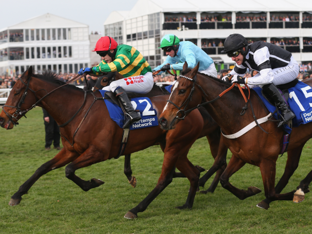 How likely is a big-priced winner at the Cheltenham Festival?
