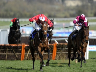 The New One remains at the head of the Champion Hurdle market