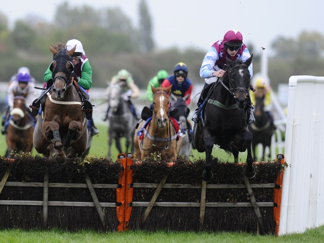 Today's best bet Sky Of Stars runs at Stratford