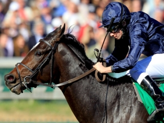 Wrote in action at the Breeders' Cup.
