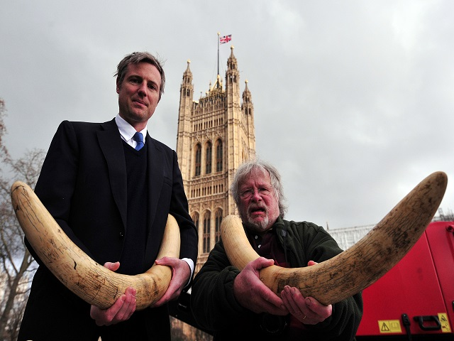 Goldsmith and Bill Oddie campaigning against ivory trade in 2014